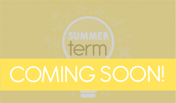 Think Maths Summer term key stage 2