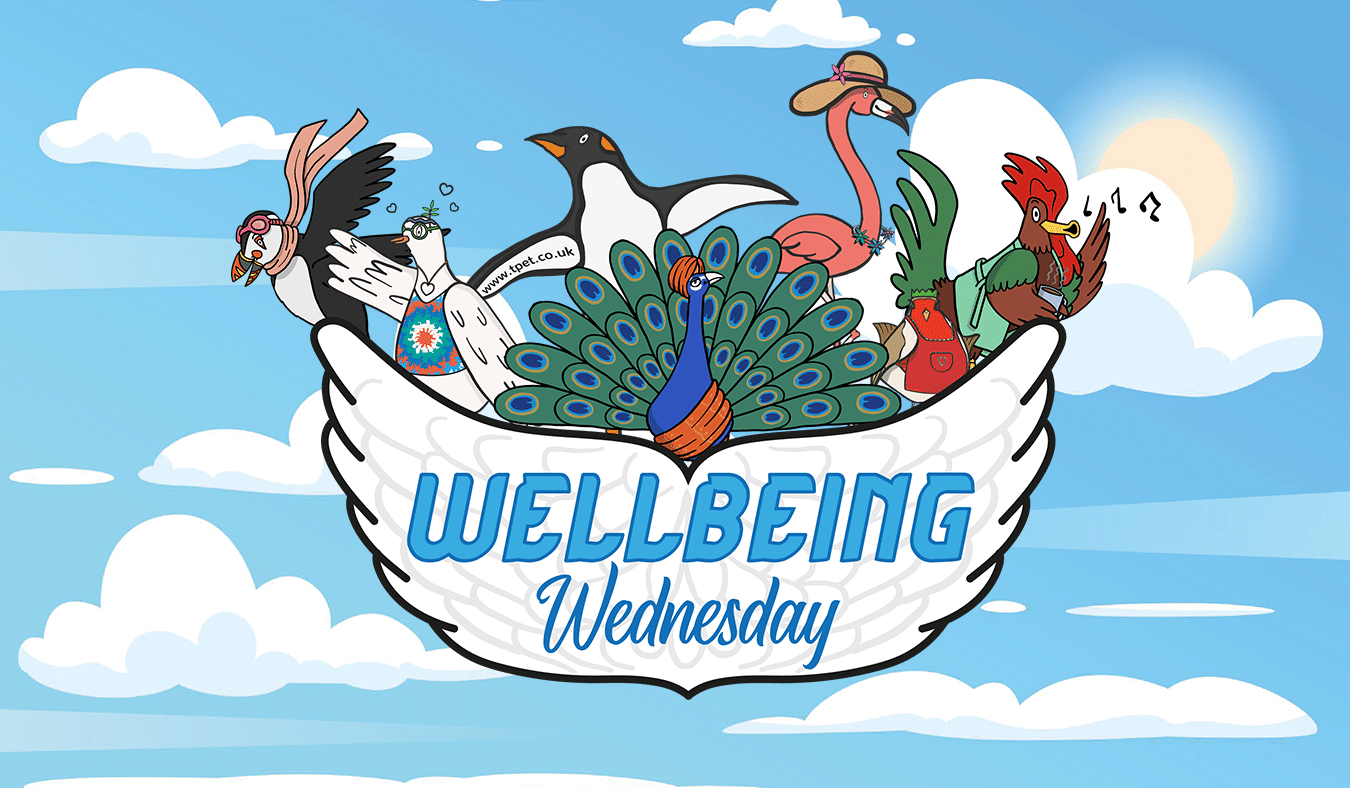 Wishing You Well – Supporting Wellbeing in the Classroom