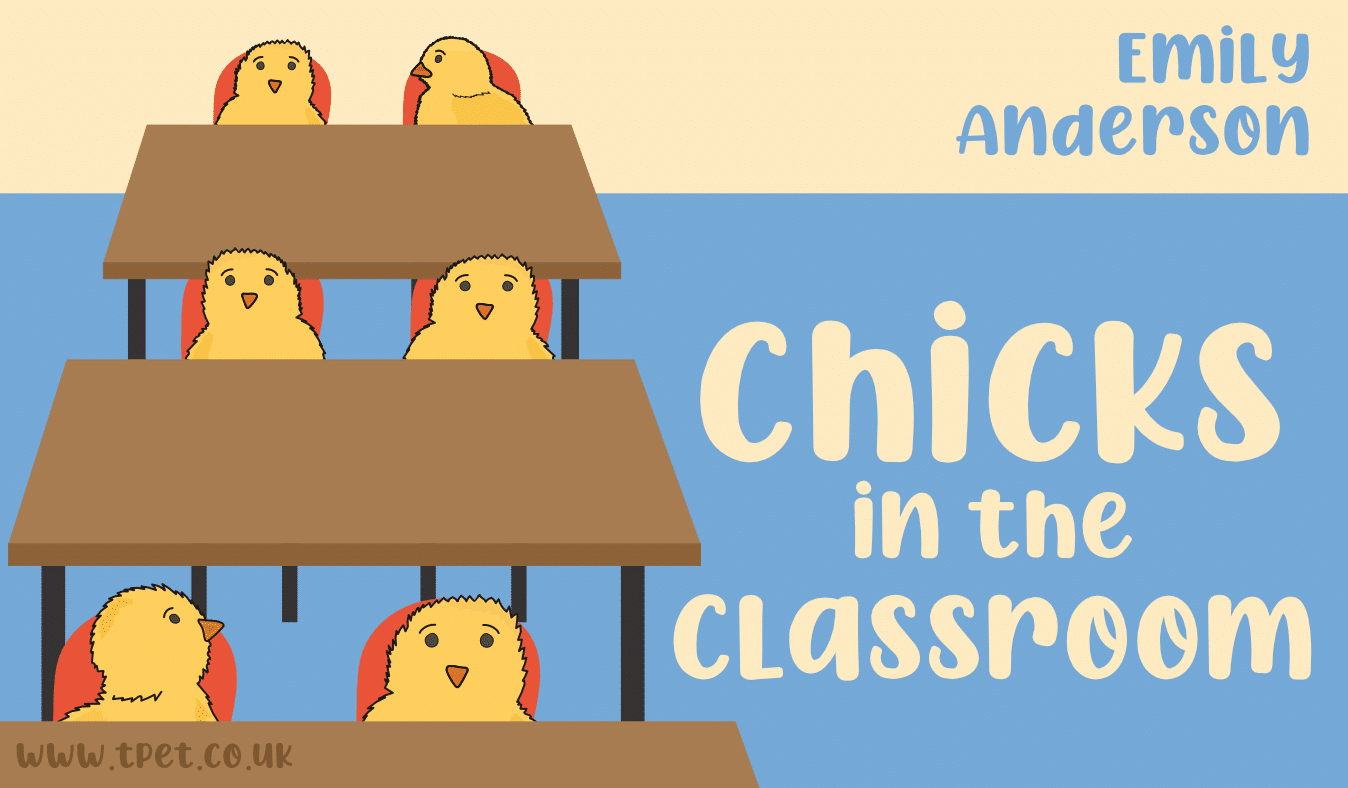 Chicks in the classroom