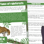 The Importance of Rainforests Comprehension