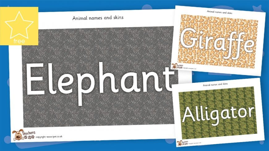 African animal skin posters
