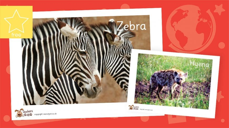 Africa photo pack 2