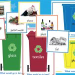 Recycling Sorting Activity