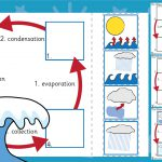 Water Cycle Sorting