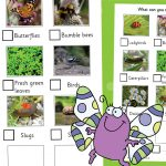 Outdoor Minibeasts Spotter Sheet