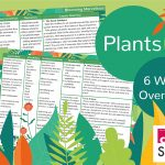 CREATE Science Plants – Year 1 Planning Overview