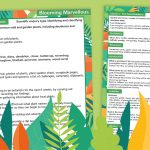 Year 1 Flowering Plants Lesson Plan 1