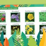 Flowering Plants Vocabulary and Photo Mat