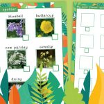 Flowering Plants Spotter Sheet