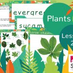 CREATE Science Plants – Year 1 Lesson 2