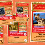 African Animals Top Trumps Card Game