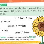 Homophone Spelling Rules Poster