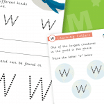 Letter W Activity Sheets
