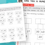 Key Stage 1 Missing Number patterns Numeracy Ninja Activity