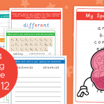 Year 4 Week 12 Spelling Practice Pack