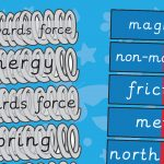Magnets and Springs Vocabulary Labels