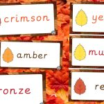Autumn Colour Labels