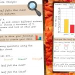 Leaf Data Analysis Autumn Activity