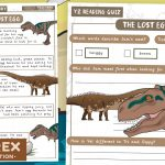 The Lost Egg – Year 2 Story with Comprehension Questions