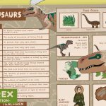 Dinosaurs Knowledge Organiser (KS1)