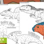 TeachRex Dinosaur Colouring