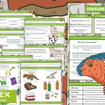 Early Years Dinosaur Topic and Provision Ideas Plan