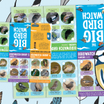The Big Bird Watch – Bird Spotting Challenge Booklet