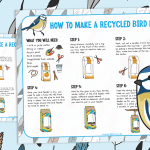 The Big Bird Watch – How to Make a Recycled Bird Feeder Guide