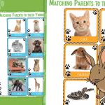Pets Matching Parents to their Young