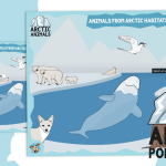 Animals from Arctic Habitats Poster