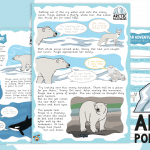 Polar Adventure Original Story (Year 2 Story and Comprehension)