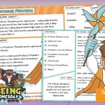 Week 1 Wellbeing Superhero Professor Pinwheel – Teaching Guide