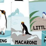 Penguin Size Comparison Posters