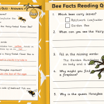 Bee Facts Reading Quiz