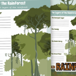 Describe The Layers of The Rainforest
