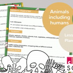 Year 3 Animals Including Humans Lesson 1 Planning