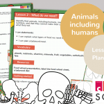 Year 3 Animals Including Humans Lesson 2 Planning