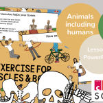 Exercise for Muscles and Bones presentation