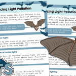 Helping Bats by Reducing Light Pollution